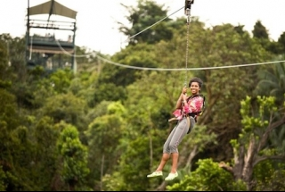 MegaZip I Cruisy Treetop Zipline to the Sea