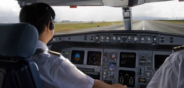 Fly a Boeing 737 (30 minutes) + DVD