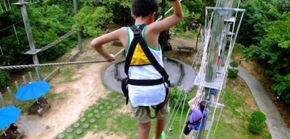 Mega Climb I High Ropes