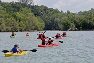 Sea Kayaking Adventure (Intermediate Level ) - 1 Adult