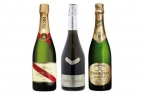 French Champagne Trio - Champagne Experience Gift Packed including delivery